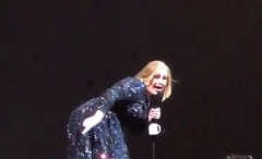 This is Adele freaking out because of a bat at her concert.