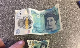 £5 note shrink