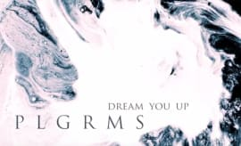 "PLGRMS - ""Dream You Up"" video"