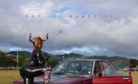 YG pop shake
