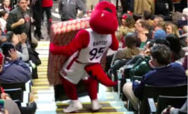 Toronto Raptors mascots drops TV while bringing it to a fan