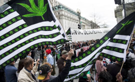 white house marijuana rally