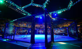 General view of a UFC octagon.