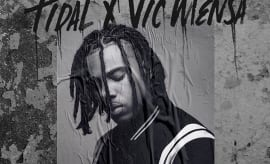 This is a photo of Vic Mensa.