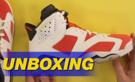 Air Jordan 6 Gatorade Unboxing
