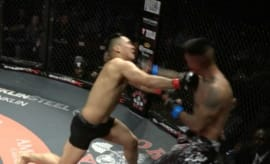 MMA fight ends after double KO.