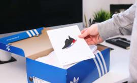 Adidas x Dan Freebairn
