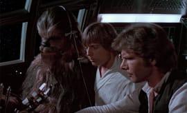 Chewy, Luke and Han.