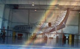 Michael Jordan Elephant Print Private Jet