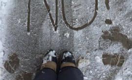 snow-no