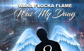 "Waka Flocka ""Was My Dawg"""