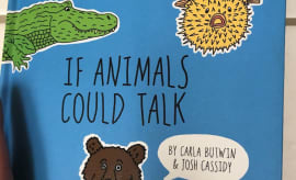 'If Animals Could Talk' book cover.