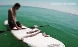 James Taylor is paddleboarding when he encounters a giant squid.