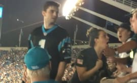 Panthers fan punches man.
