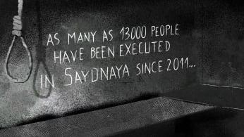 Amnesty International's Syria report