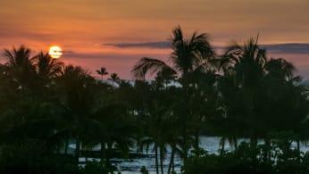 hawaii-beach