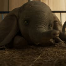dumbo-movie-trailer
