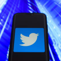 Twitter logo is seen on an Android mobile device.
