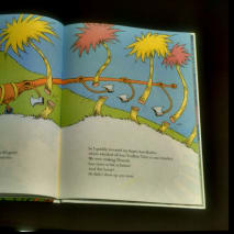 Pages of Dr. Seuss's children's book re saving trees, 'The Lorax.'