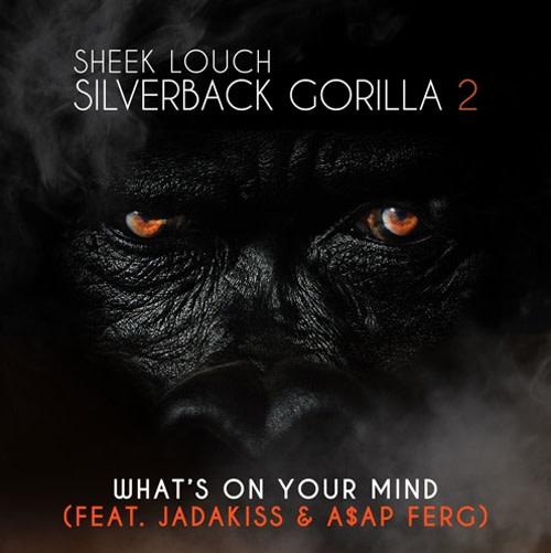 Sheek Louch Silverback Gorilla 2