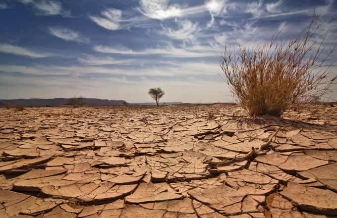 Australian Report Lays Out Devastating Consequences Climate Change