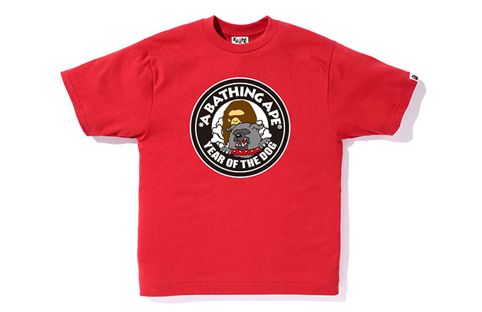 This is a photo of Bape.