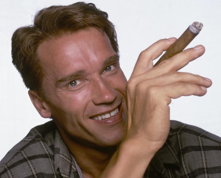 The Best Arnold Schwarzenegger Movies   Complex