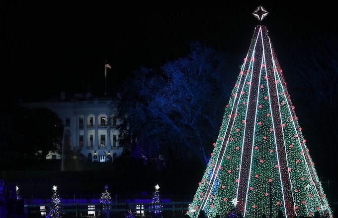 man-climbs-national-christmas-tree
