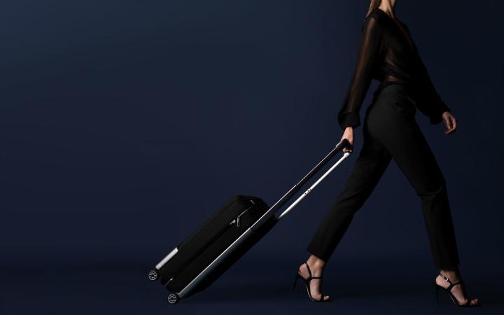 vocier-luggage6