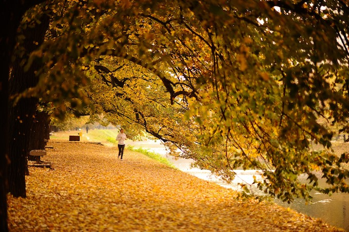 A woman runs amid deciduous leafs during autumn on Vilsonovo Hiking Trail in Sarajevo, Bosnia.