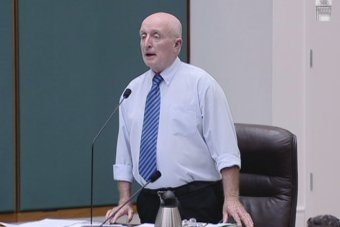Independent Northern Territory Senator Gerry Wood in parliament this week