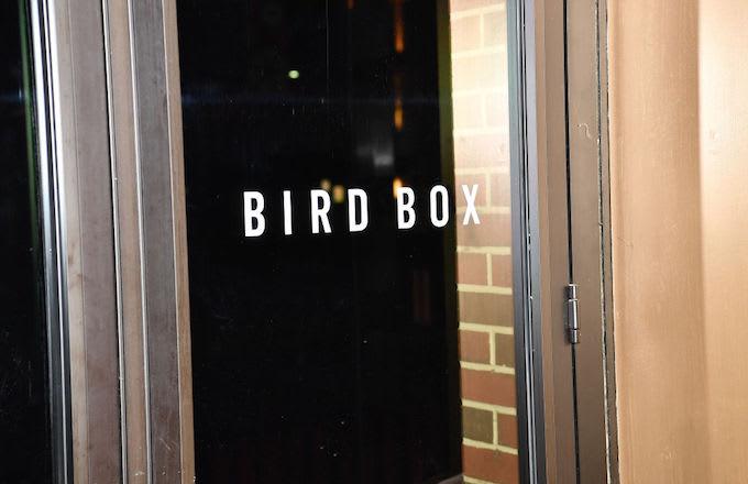 Bird Box car crash