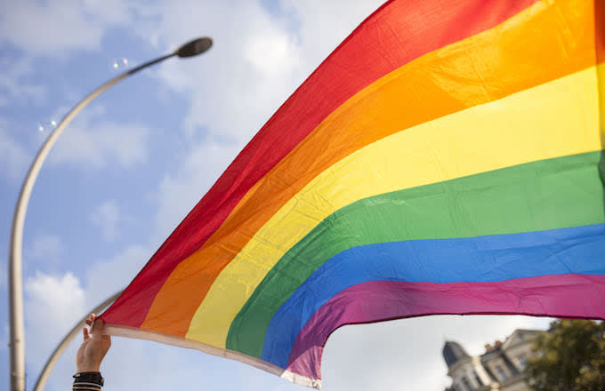 A participant is holding the pride flag.