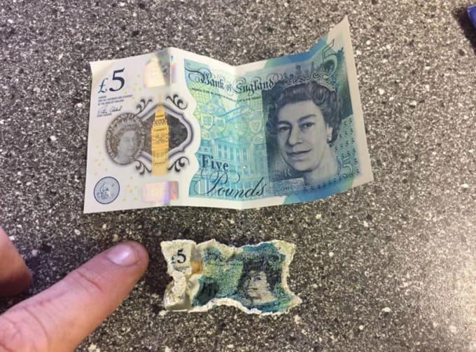 £5 note shrink