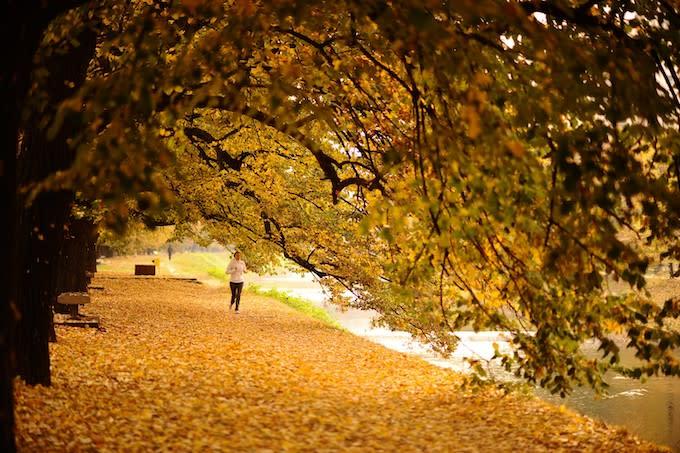A woman runs amid deciduous leafs during autumn on Vilsonovo Hiking Trail in Sarajevo, Bosnia.