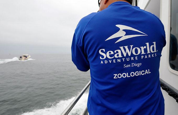 A SeaWorld San Diego worker