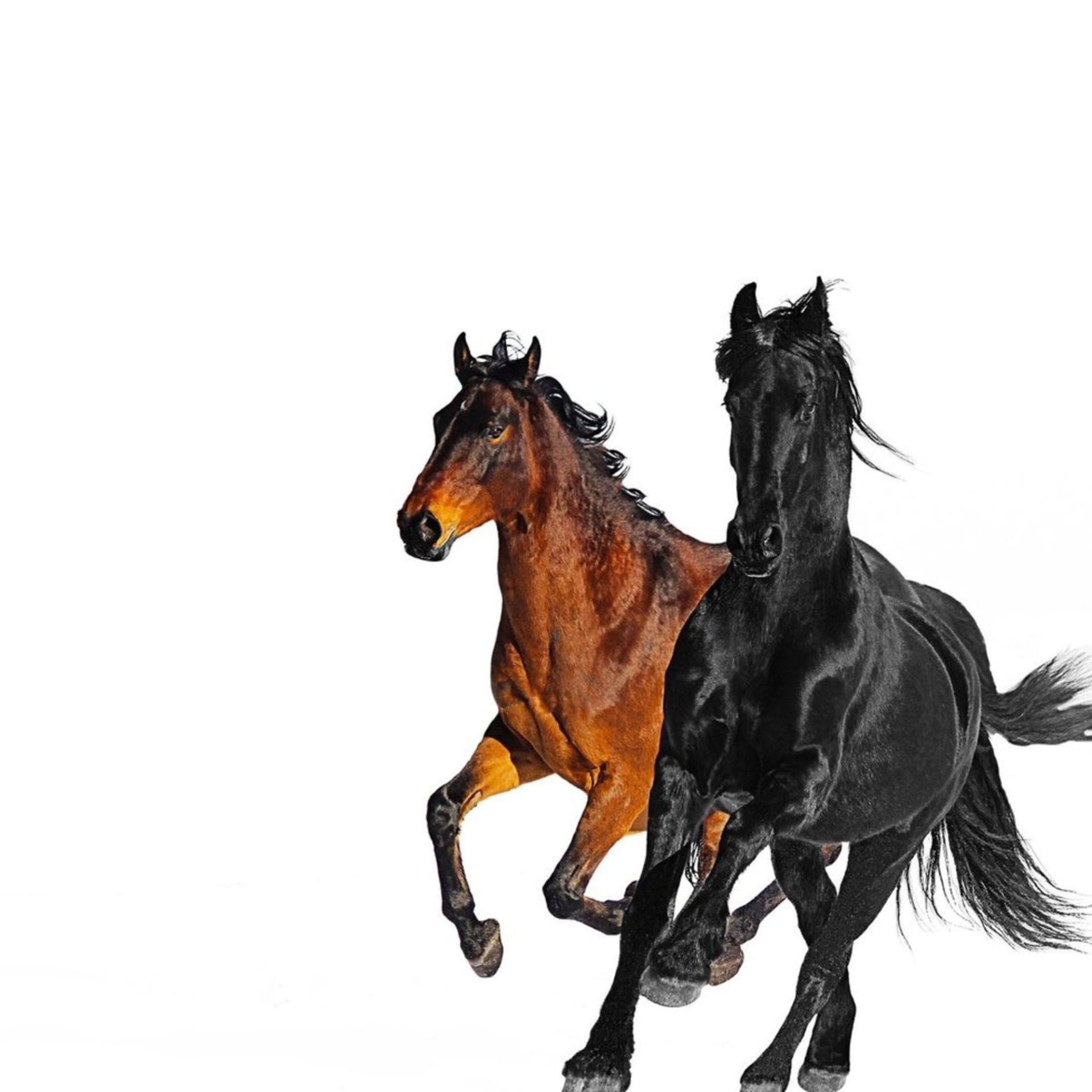 """Lil Nas X """"Old Town Road"""" remix"""