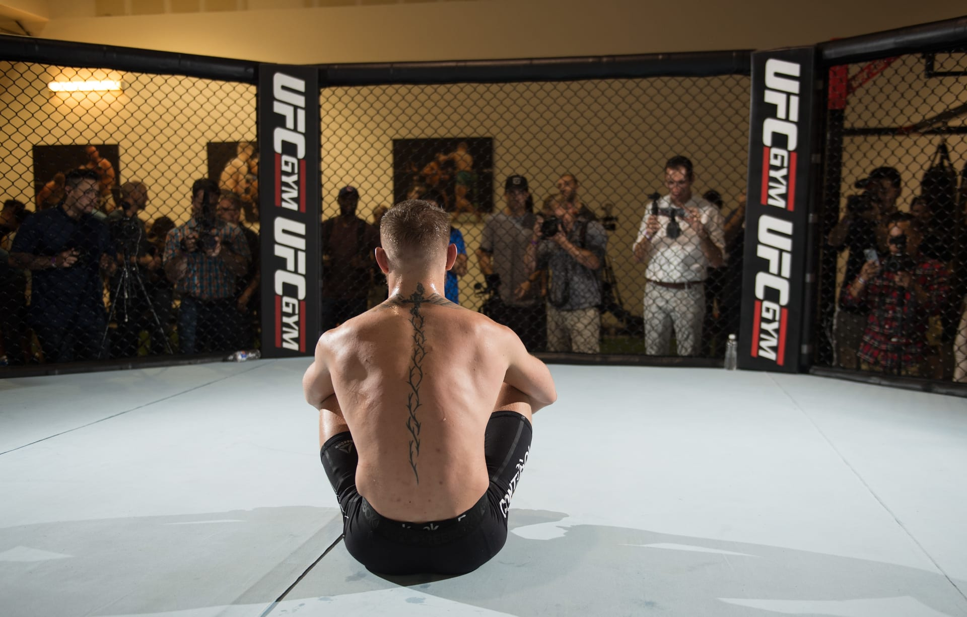 Conor McGregor UFC Gym 2017 Getty