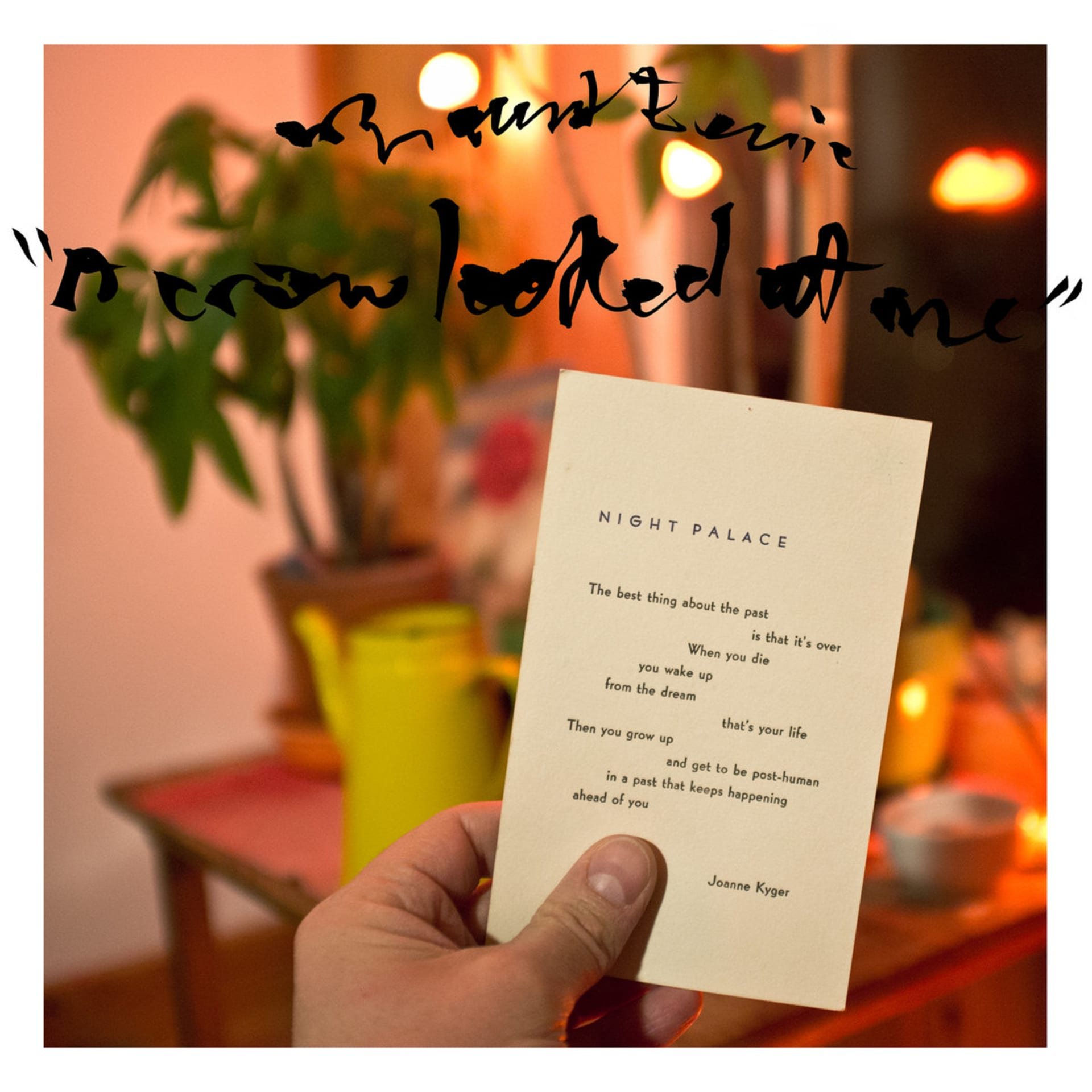 Mount Eerie -  A Crow Looked At Me  b1b64b6bba9c