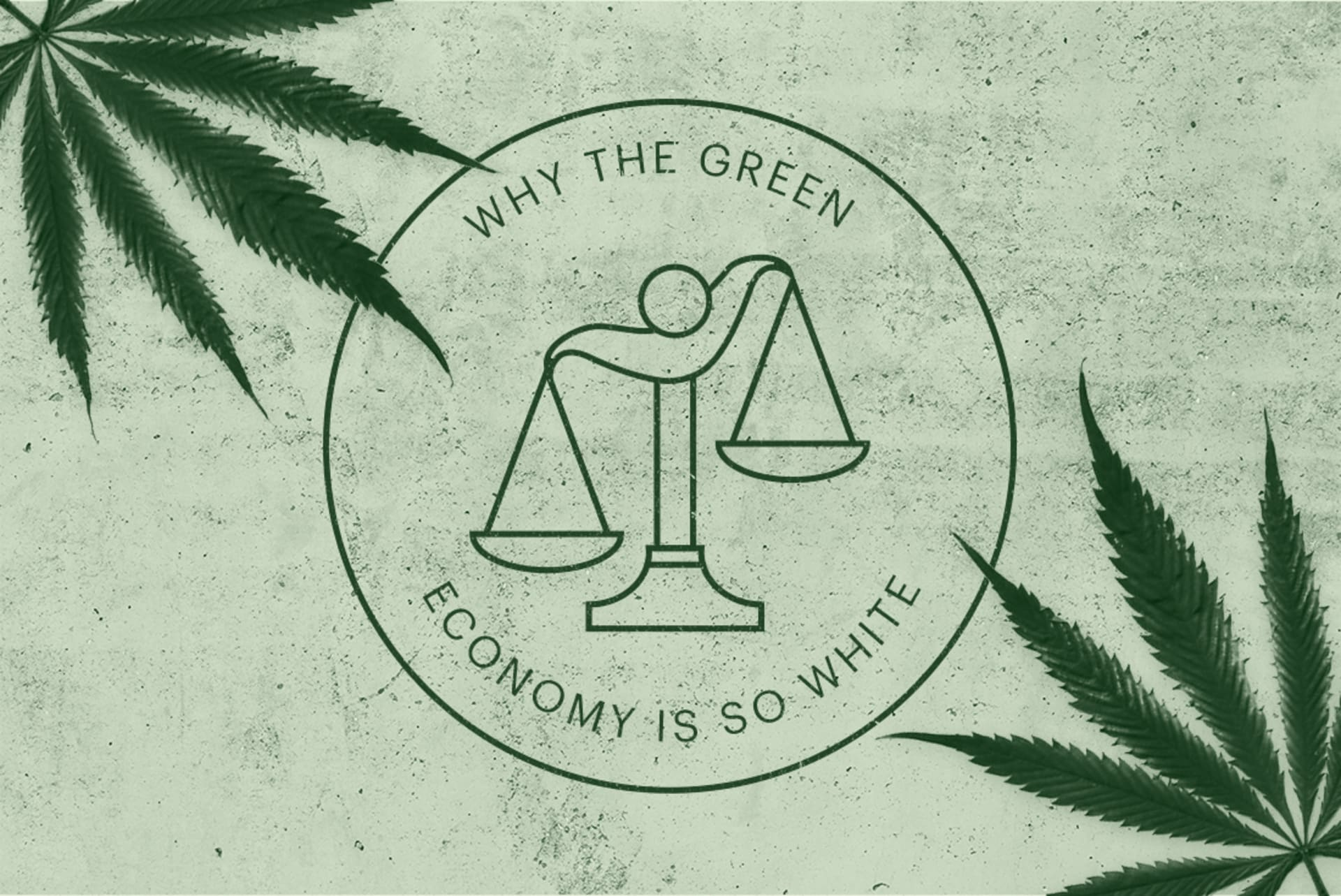 Image result for cannabis industries in poor communities