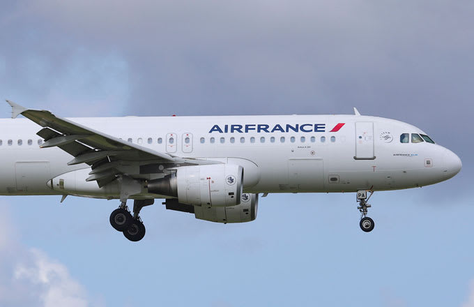 Dog Dies After Mistakenly Being Stored in Air France Cargo Hold