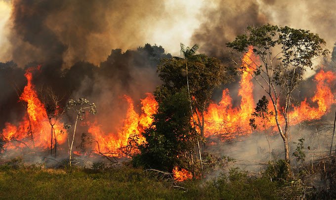 Brazil's President Is Circulating Conspiracy Theories About the Amazon Fires