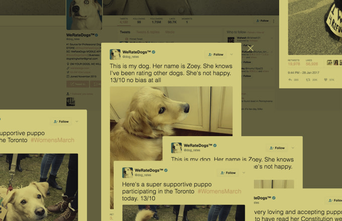 "A ""14/10"" Interview With the Guy Behind the Amazing We Rate Dogs Twitter Account"