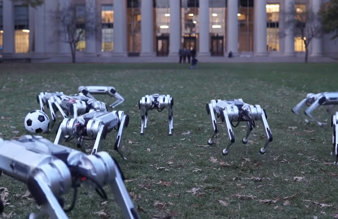 Watch MIT's 'Virtually Indestructible' Mini Cheetah Robots Do Backflips and Play Soccer