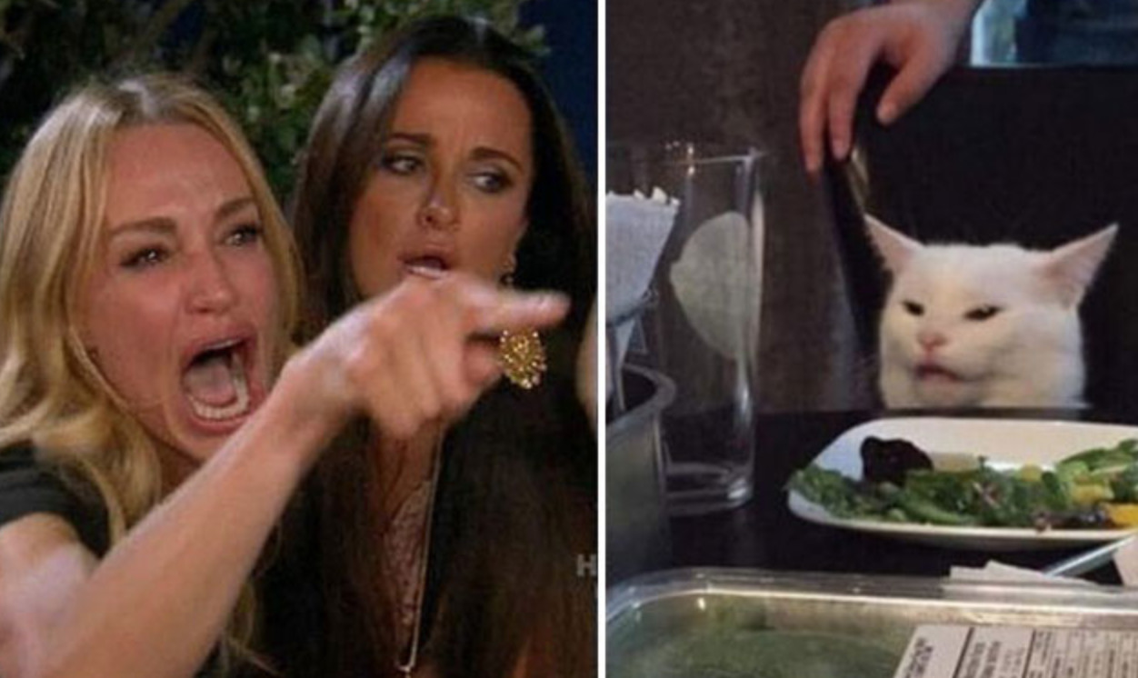 Hilarious Woman Yelling at Smudge the Cat Meme Finds Second Life on Twitter