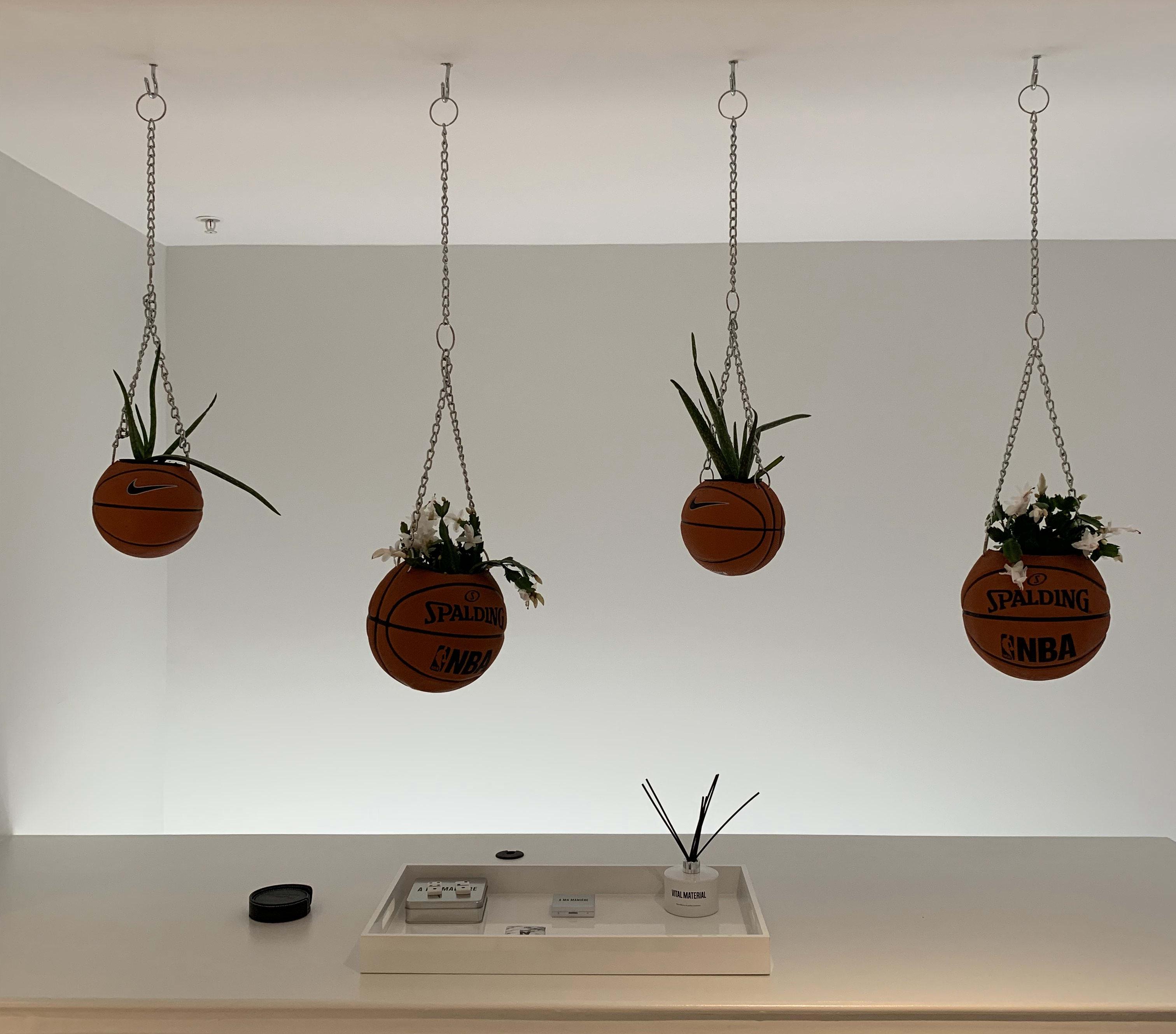 A Ma Maniere (Plants)