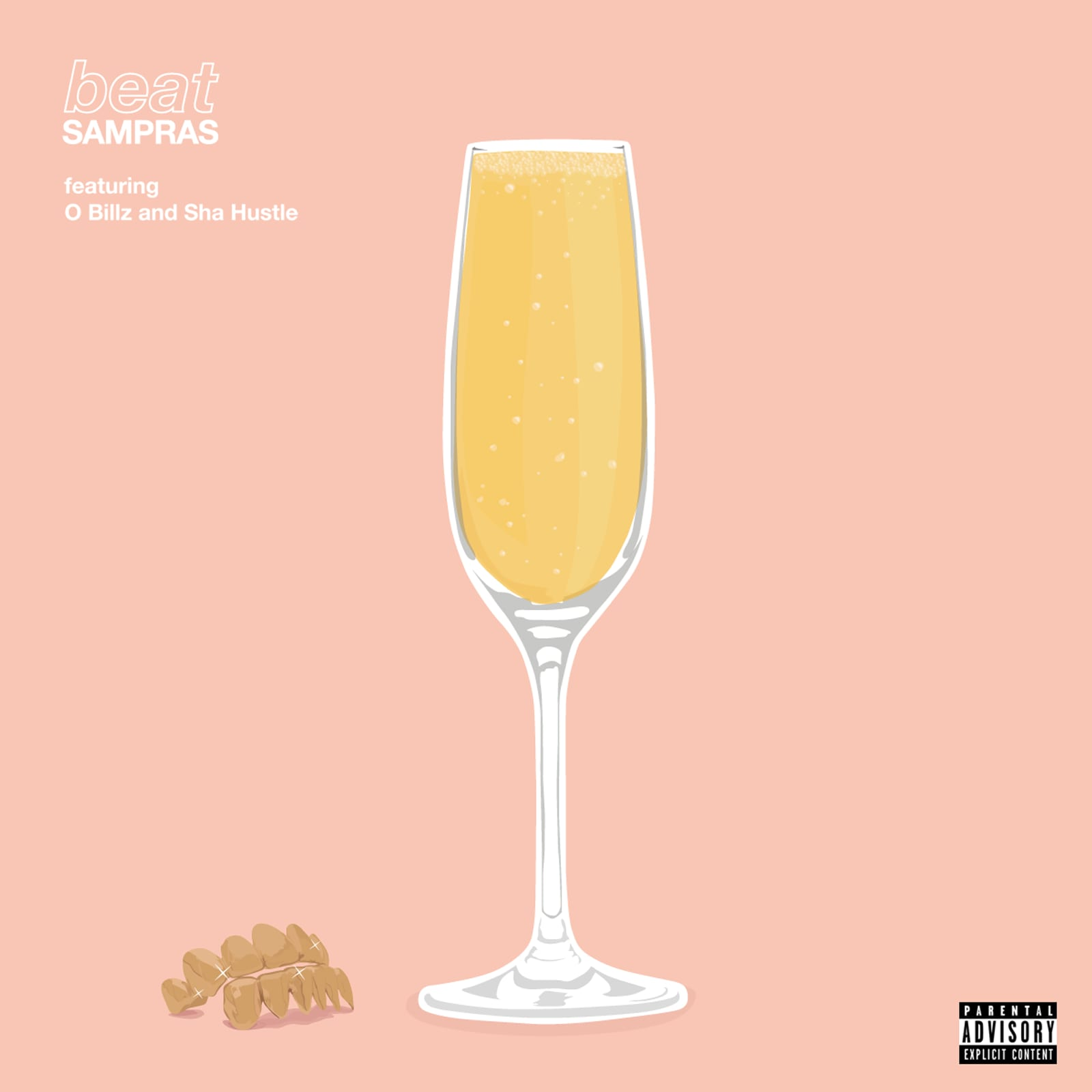 Beat Sampras Hood Mimosa Album Art