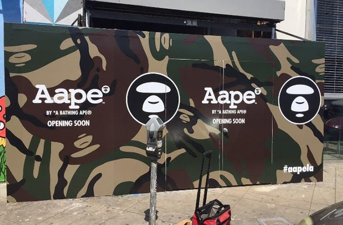 This is a photo of Aape.