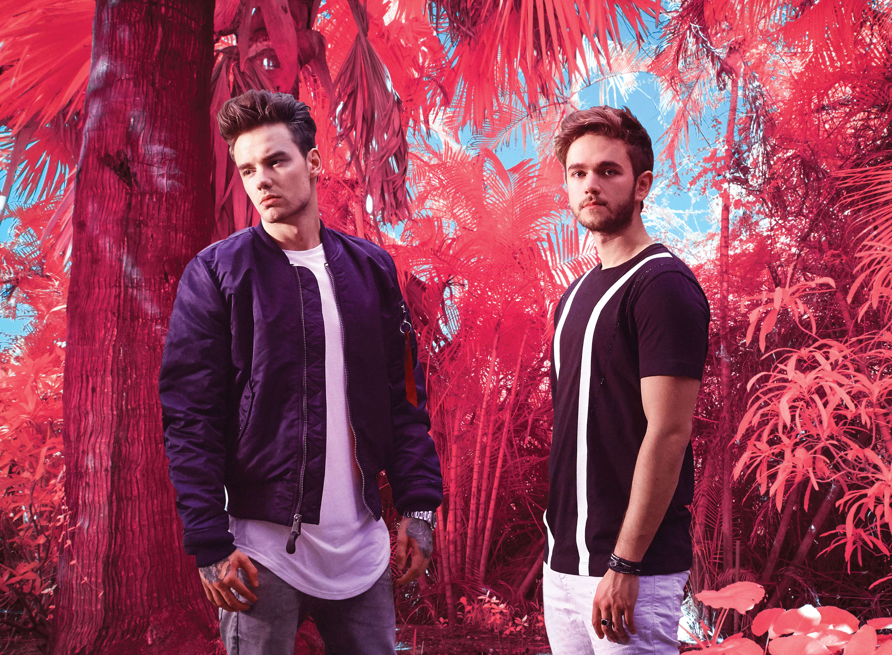 LISTEN Zedd releases new single featuring Liam Payne