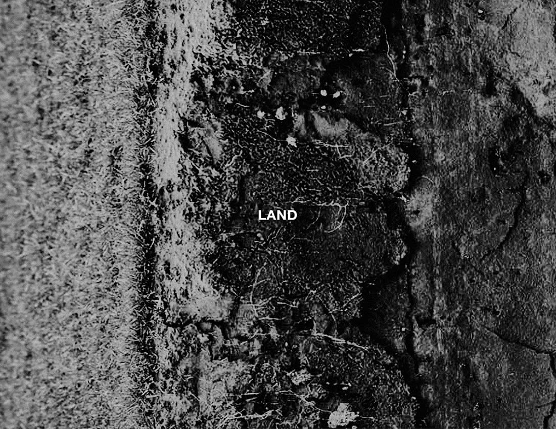 land-pnp-merch